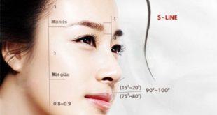 Phần chân mũi sẽ giúp mũi được chắc chắn và vững vàng hơn