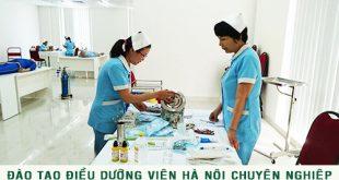 dao-tao-dieu-duong-vien-chuyen-nghiep-thai-thinh
