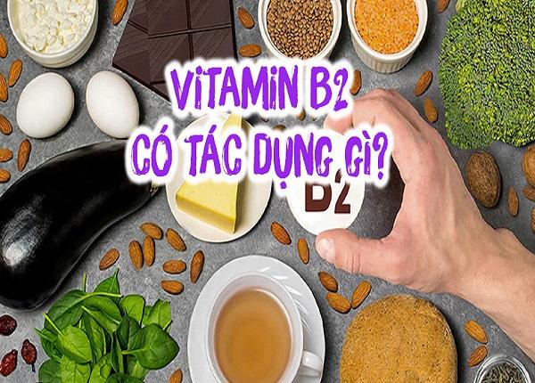 Vitamin B2 có tác dụng đối với như thế nào đối với cơ thể?