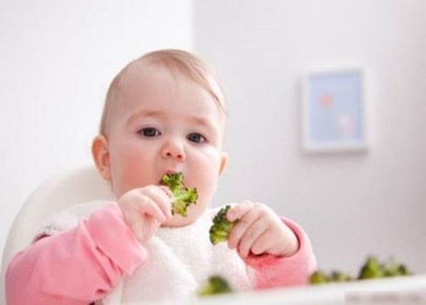 Khi bé được 6 tháng tuổi thì cha mẹ nên tập cho con ăn dặm